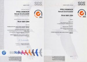 pn-n-18001-2004-pl